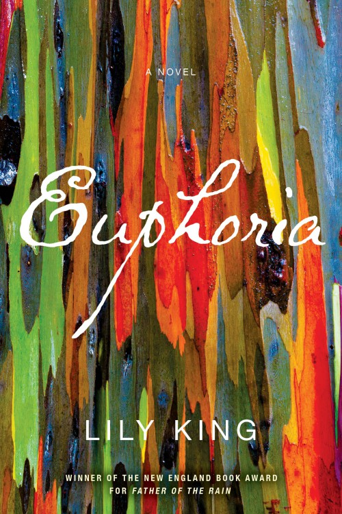 Euphoria by Lily King cover